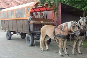 ausgespannter-planwagen